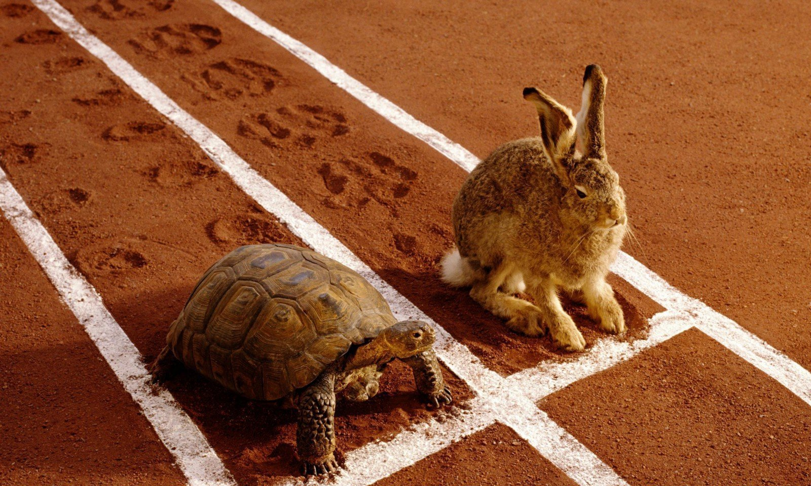 Going Slow: The Slow Movement