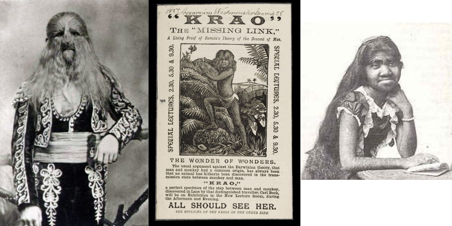 Solving the Mystery of V&A's 'Monkey Woman'
