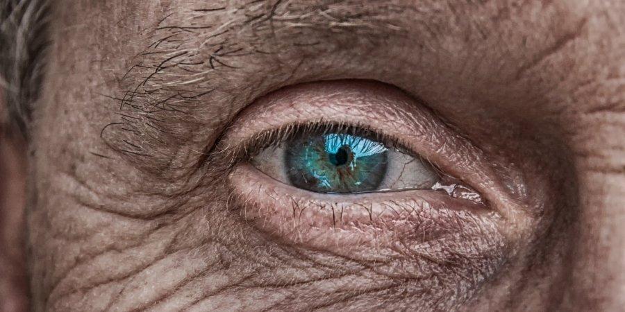 NonSense: As Far As The Eye Can See